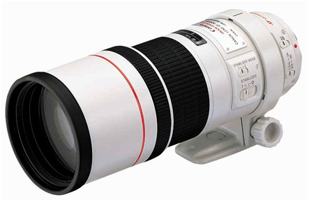 Canon EF 300mm f4L IS USM